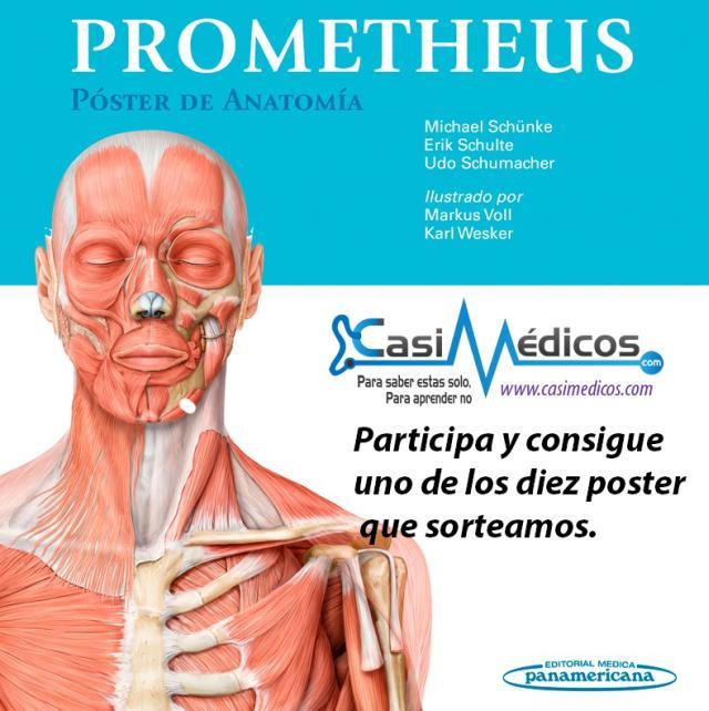 Sorteo. Prometheus. Póster de Anatomía.