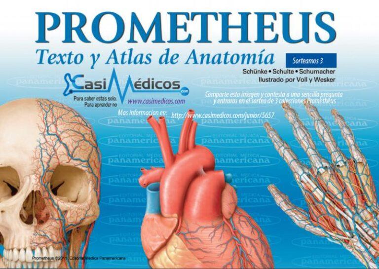 Ganadores 3 colecciones Prometheus