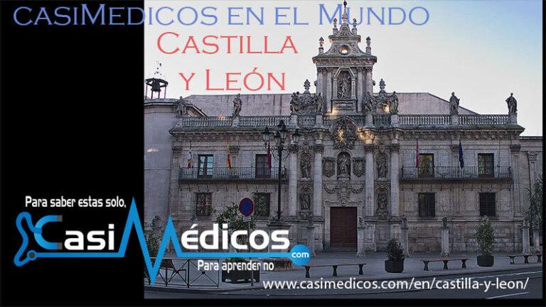 Mi experiencia de primer año de Medicina en Valladolid