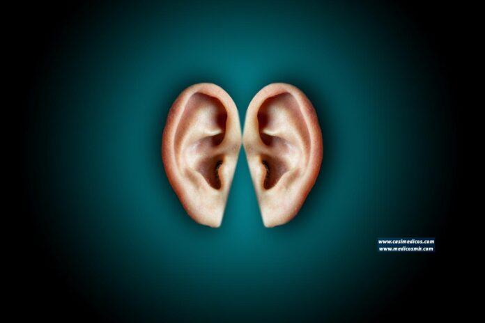 audición - Foto de Bastian Riccardi
